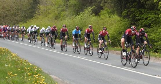 F1_Bikes