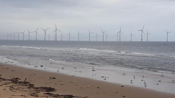G_Wind power